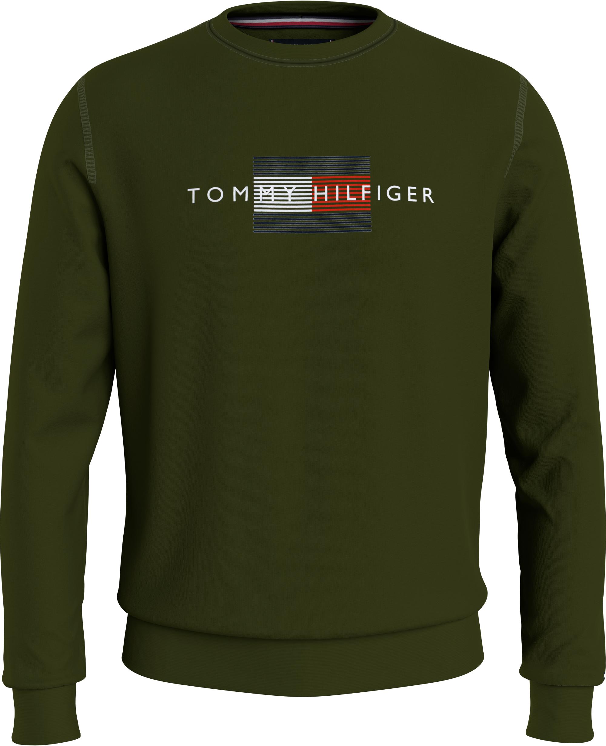 Sweatshirts LINES HILFIGER CREWNECK MW0MW20118